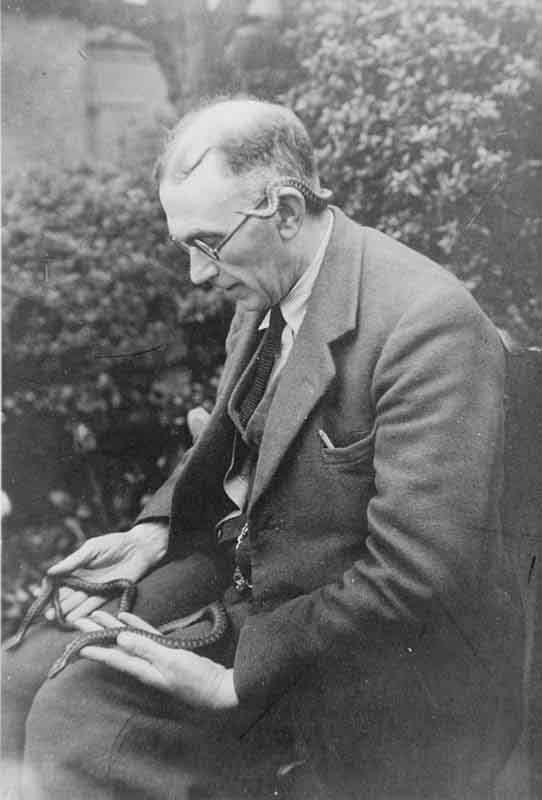 Tormod An T'Seoldair, Dr Norman Morrison holding an adder with another resting around his head and neck