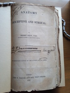 The original manuscript for Gray's Anatomy by Henry Gray with edits